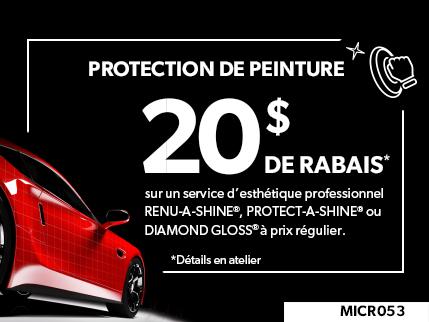 MICR053 - PROTECTION DE PEINTURE $20 DE RABAIS