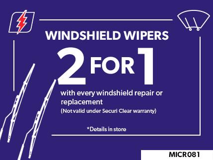 MICR081 - Windshield wiper 2 FOR 1