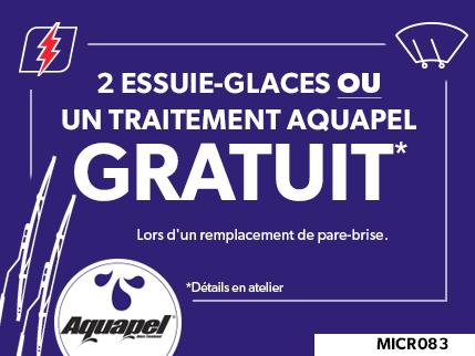 MICR083 - 2 Essuie-Glaces ou un traitement Aquapel GRATUIT